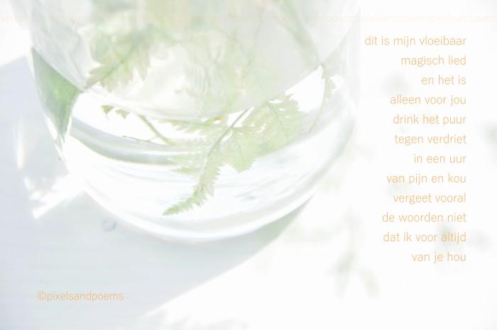 0213 - canto consolatief mw